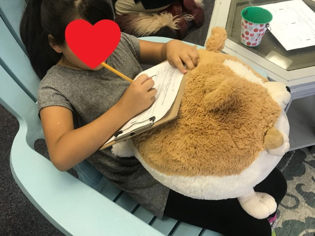 flexible seating classroom management - using stuffed animals