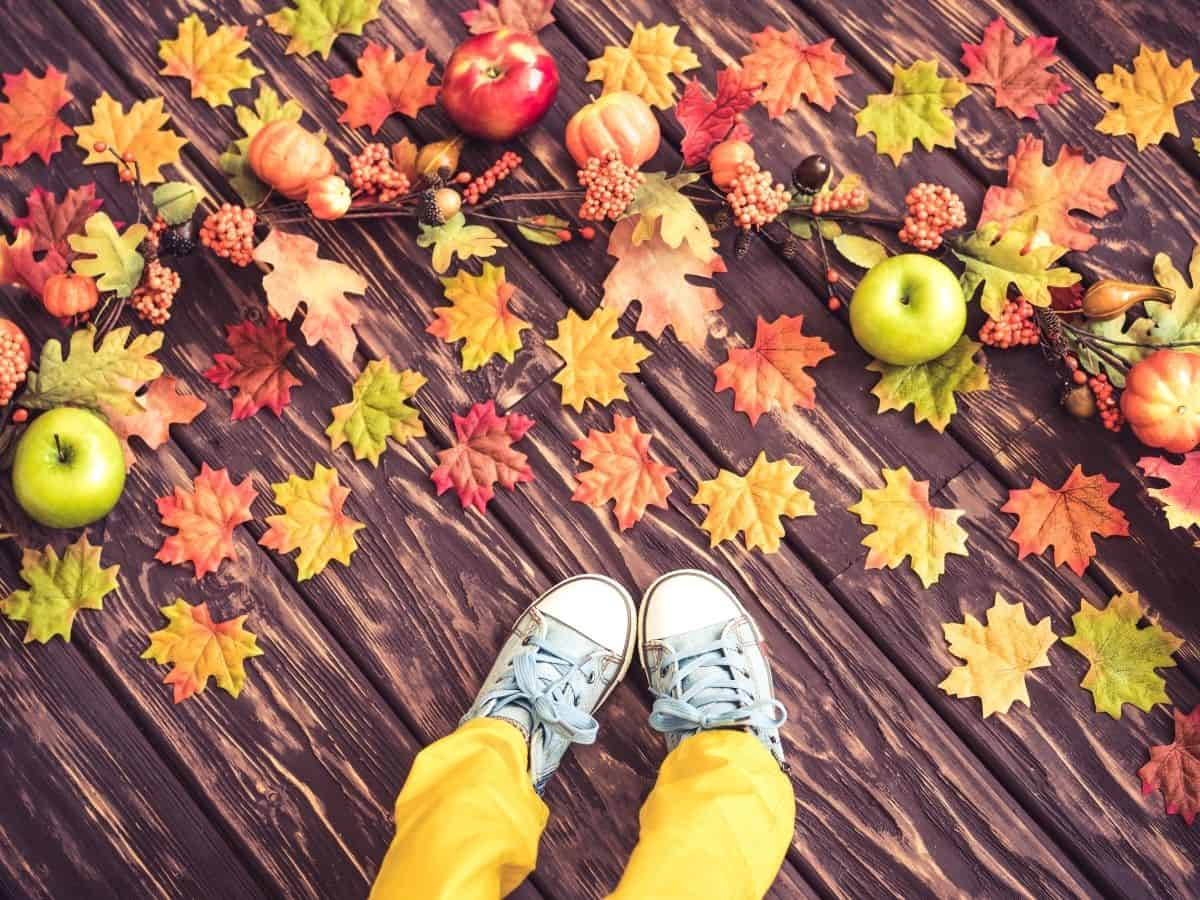 Thanksgiving would you rather - child's shoes on a wooden floor with fall leaves